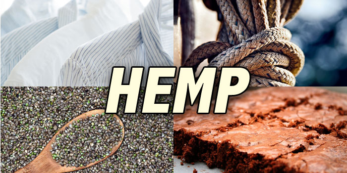 Update on the Hemp Farming Act of 2018