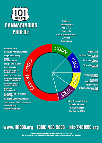 101 CBD Cannabinoid Profile