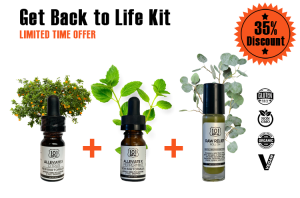 GET BACK TO LIFE KIT