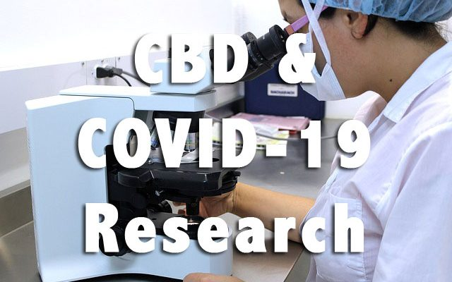 CBD Takes A Step Forward in COVID-19 Research
